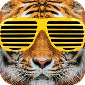 afterschool app