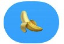 penis1